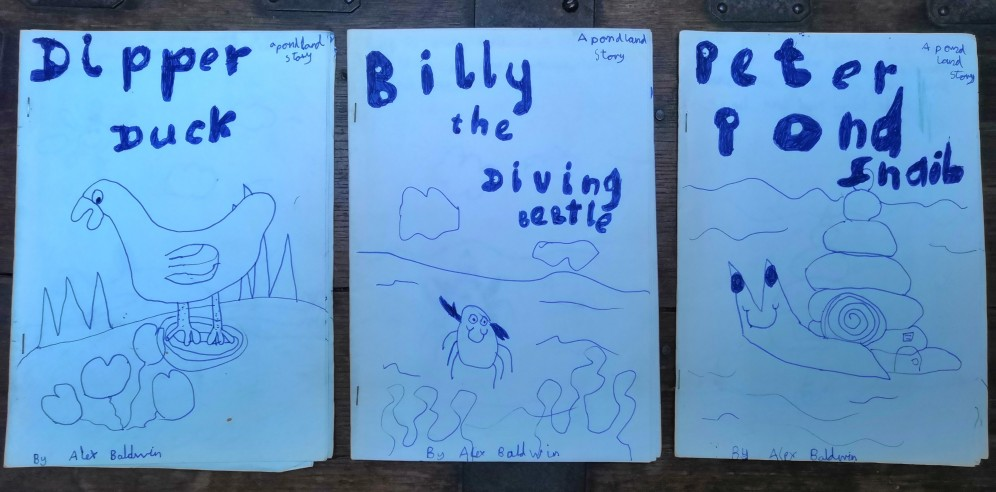 'Pond Land' stories made circa 1992 (at 9 years of age)
